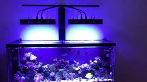 55 gallon aquarium light 2017 diy reef led light mount mars aqua 165w 55 gallon saltwater