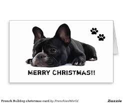 christmas card with dog ideas christmas lights decoration