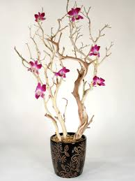 branch centerpieces events by tammy orchid and manzanita branch centerpieces