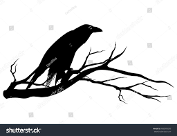 black raven bird sitting on tree stock vector 668504209 shutterstock