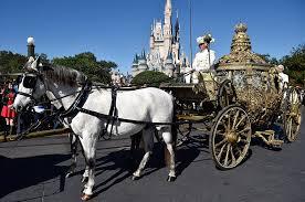 cinderella coach magic kingdom park welcomes the golden coach from cinderella