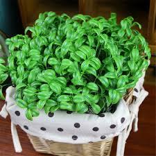 online get cheap succulent bouquet aliexpress com alibaba group