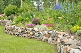 Rock Garden Perennials by Northern Exposure Gardening July 2011