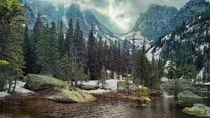 nature landscape mountain forest lake rock pine trees