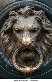 lion door knocker lion door knocker throughout brass stock photos architecture meaning