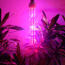 80w 150w 230w full spectrum led grow light stick for indoor garden
