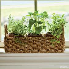 Window Sill Inspiration Peaceful Inspiration Ideas Windowsill Planter Impressive Window