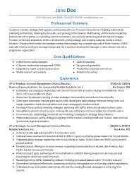 sales resume summary vp sales resume free resume example and writing download professional vice president of sales templates to showcase your talent myperfectresume