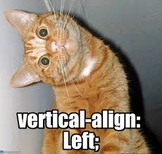 Meme Html - vertical align left cat tilting head meme on memegen
