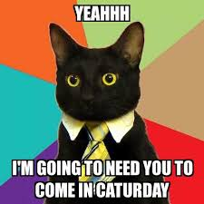 Yeahhh Meme - business cat yeahhh i m going to need you to come in caturday