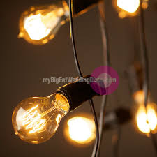 Grape Cluster String Lights by 100 Large Bulb String Lights Battery Operated Large Festoon
