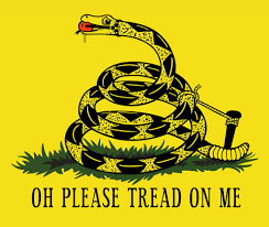 Don T Tread On Me Confederate Flag Don T Tread On Me Flag Meaningworld Of Flags World Of Flags