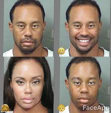 Tiger Woods Meme - tiger woods mugshot gets the meme treatment daily mail online