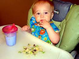 table food ideas for 9 month old the journey of parenthood feeding a