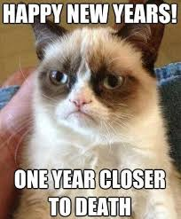 Meme Cheezburger - 15 new year s memes for a purrfect 2018 i can has cheezburger