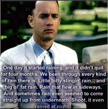 Forrest Gump Rain Meme - pin by kelly wilkerson on funnies quotes things 1 pinterest