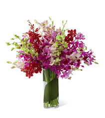 orchid bouquet luminous luxury orchid bouquet open blooms flower delivery