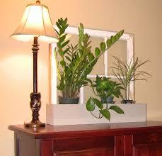 interior killer white green living room decoration using dark