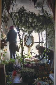 geoffroy mottart 206 best medium flower images on pinterest display windows