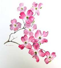 Pretty Flowers For Tattoos - dogwood branch drawing 1000 ideas about dogwood tattoo on