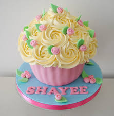 cupcake amazing 6 year old birthday cupcakes birthday party