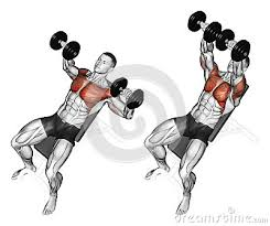 How To Do Dumbbell Bench Press Chest Workouts Incline Bench Press Flat Bench Press Decline