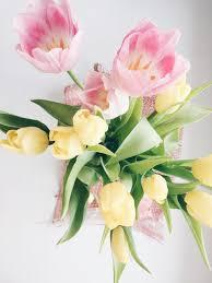 Flowers And Friends - international women u0027s day u2014 missy u0027s meanderings