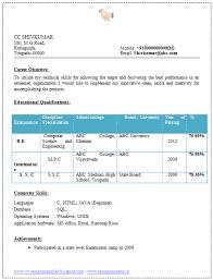 professional cv format mechanical engineer