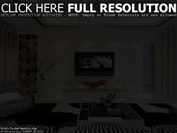living living room deluxe modern living room decorations ideas