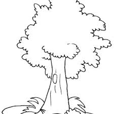 oak tree coloring pages funycoloring