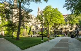 graduate student at large university of chicago graham
