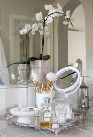Bathroom Tips Tips For Styling The Bathroom Vanity Best Friends For Frosting