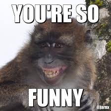 Sexy Monkey Meme - 35 very funny monkey meme photos and pictures