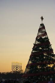 national christmas tree 5 things you u0027ll want to know besides how