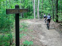 North Carolina forest images Mountain biking at dupont state recreational forest north carolina jpg