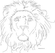 printable 21 lion head coloring pages 7591 lion head coloring