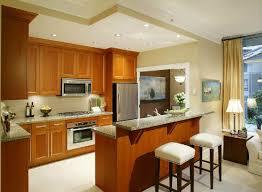 Kitchen Paint Colors With Oak Cabinets Best Kitchen Paint Colors House Paint Colors