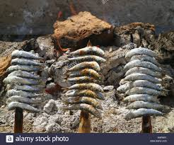 skewers or espetos of sardines roasting on an open fire typical