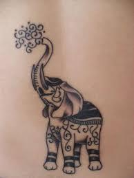 25 beautiful meaning of elephant ideas on pinterest elephant
