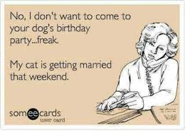 Some E Card Birthday No I Don T Want To Come To Your Dog S Birthday Partyreak My Cat Is
