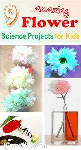 Backyard Science Games 9 Amazing Flower Science Projects For Kids