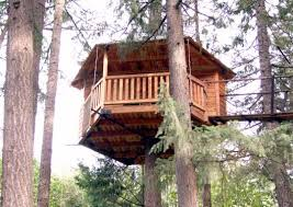 treehouse home plans treehouse out n about treehouses root costs