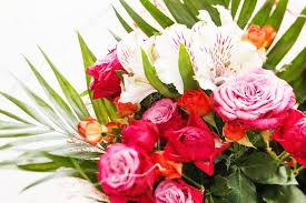 Nice Flowers Nice Flowers U2014 Stock Photo Shebeko 25953897