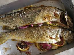 cuisiner truite au four truite de rivière au four saveurs de famille