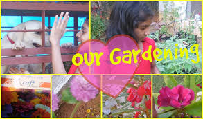 kids gardening flowering seeds amazon in flower plants youtube