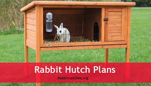 rabbit hutch plans rabbit hutches