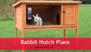 rabbit hutch plans rabbit hutch plans rabbit hutches