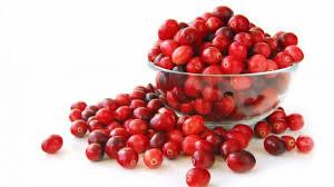 cranberries grab thanksgiving spotlight especially in wisconsin
