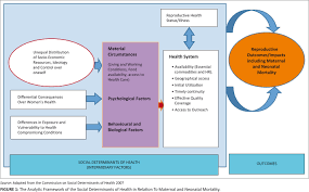 Thesis Theoretical Framework Social Factors Determining Maternal And Neonatal Mortality In