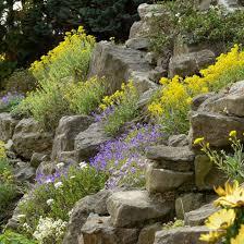 steingarten planen anlegen und tipps mein schöner garten